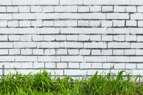 Panel Szklany White brick wall and fresh green grass