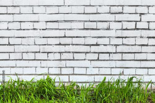 Fototapeta White brick wall and fresh green grass