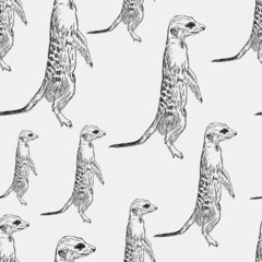 seamless pattern meerkat stands guard alarm attention black on a