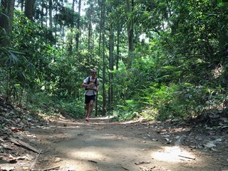 Trail runner on forest path