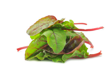 Red Chard salad leaves