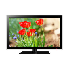 TV isolated on white with flowers on the screen