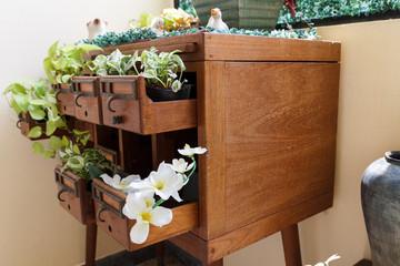 plant in desk drawer