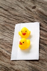 Lovely of yellow rubber duck