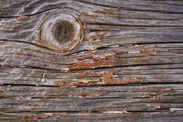 Old cracked wooden plank