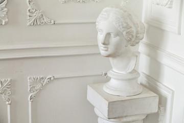 Head sculpture in  classic interior