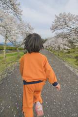 桜並木の中を走る子供