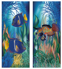 Underwater banners and tropicals fish, vector illustration