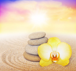 Spa concept. Flower yellow orchid and stone.