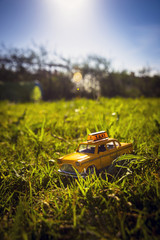 Taxi in the grass
