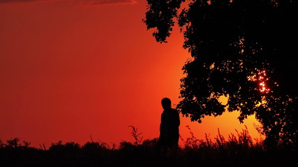 Silhouette of Man with Waving Hand in Idyllic Sunset
