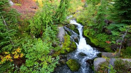 clean spring water stream