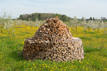 Firewood stack.