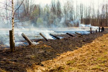 Smoke After Bushfire