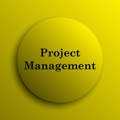 Project management icon
