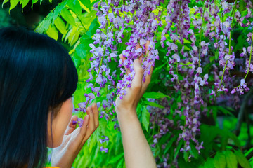 woman smelling flowers of a wild wisteria