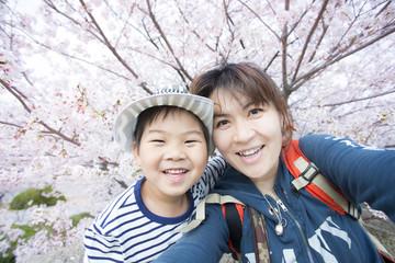 満開の桜と元気な子供