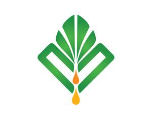 Palm Oil Process