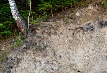layer of soil