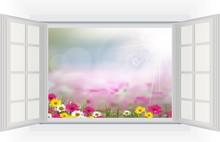Ouvrir la fenêtre avec Belle fleur est dans les rayons de lumière