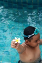 plumeria flower in hand the boy at swimming pool