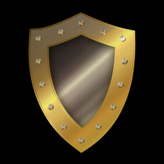 Gold riveted shield.