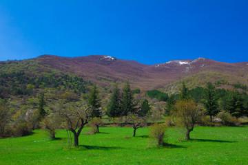 Paesaggio rurale di campagna in abruzzo