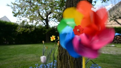 Decorative swirling colorful pinwheel in the flowerbed.