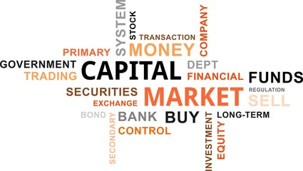 word cloud - capital market