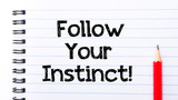 Follow Your Instinct Text written on notebook page poster