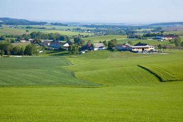 ザルツカンマーグート地方の田園風景