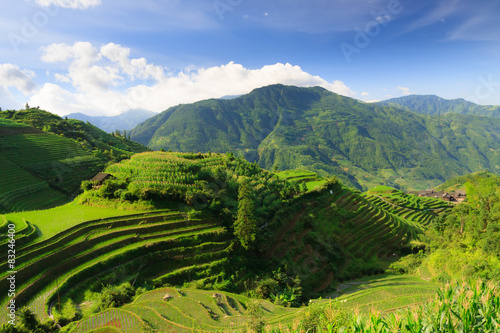 Landscape photo of rice terraces in china