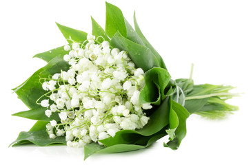 bouquet of lily of the valley isolated on the white background