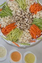 Platter of assorted fresh vegetables and salsa with dip