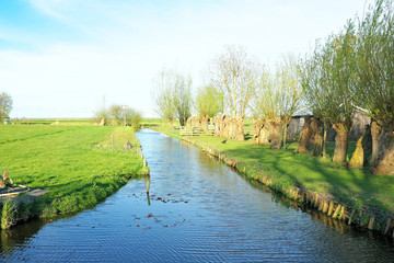 Typical dutch landscape in the Netherlands