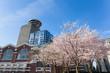 Springtime in Vancouver BC