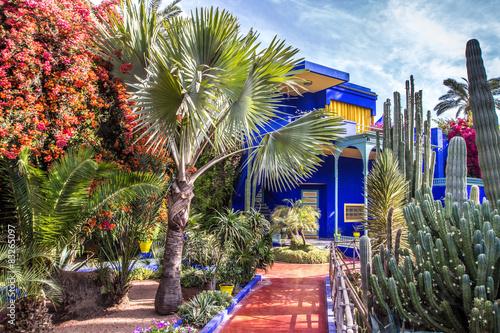 Papiers peints Maroc jardin de la villa Majorelle