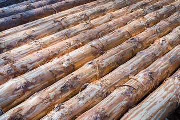 A large pile of logs stacked
