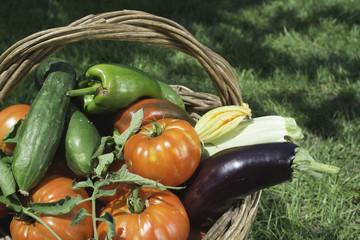Vegetables in a wooden basket
