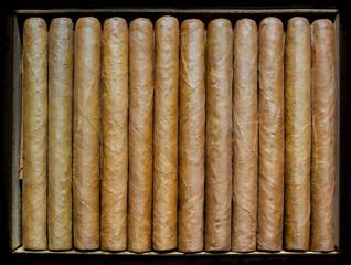 Twelve cigars