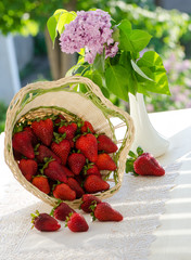 Strawberries, berries in the basket, spread out over the table