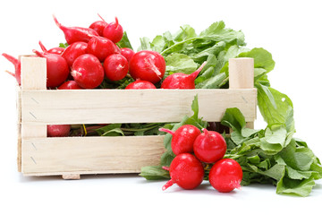 Fresh red radish in crate