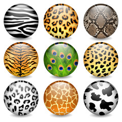 Animal patterns shiny buttons
