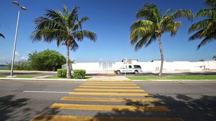 Pedestrian crossing on tropical street