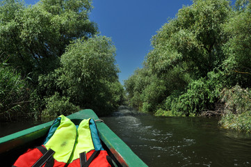 Exploring Danube delta with a boat