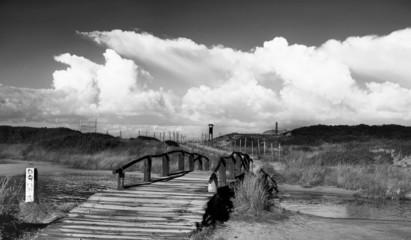 antico ponte in legno che attraverso lo stagno