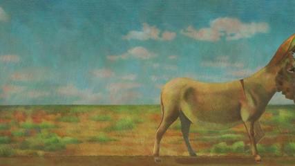 Strolling Donkey