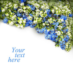 Garland of Forget-me and Baptisia on white background
