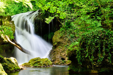 Forest waterfall in summer
