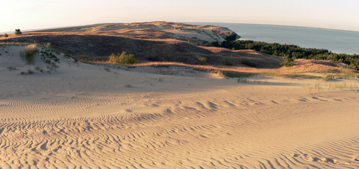 Panorama of The Curonian Spit Dunes